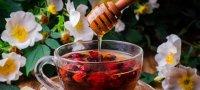 Сироп корня солодки: лечебные свойства, инструкция по применению для детей и взрослых